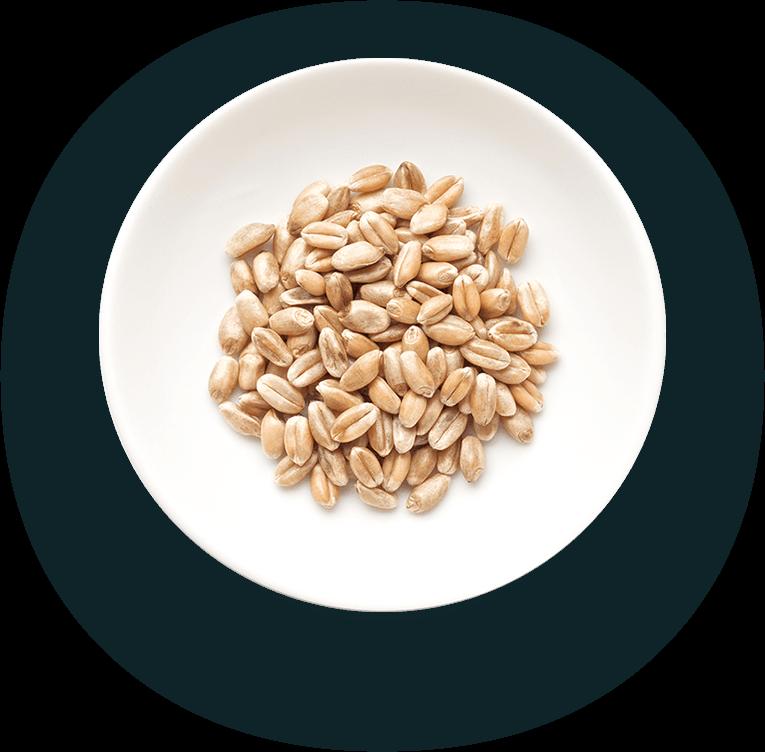 Beans left